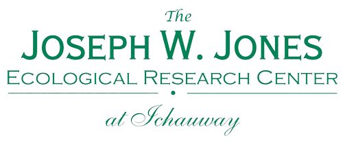 Joseph W. Jones Ecological Research Center
